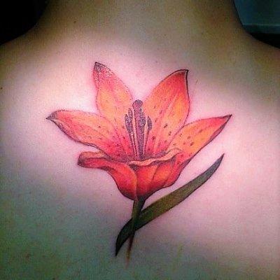Lily tattoo (2)