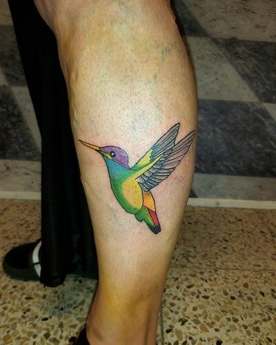 Annikan kolibri iholla (2)